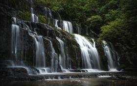 Обои водопад, вода, зелень, камни
