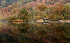Обои холм, склон, отражение, гладь, озеро, деревья