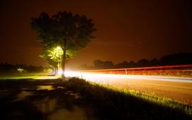 Обои дорога, небо, движение, дерево