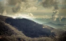 Обои тучи, горы, облака, деревья, North Carolina, леса, США
