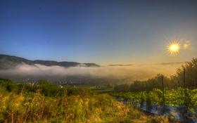 Обои плантации, лучи, горы, туман, Германия, рассвет, городок
