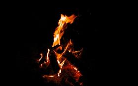 Обои demon, fire, flame, night, campfire