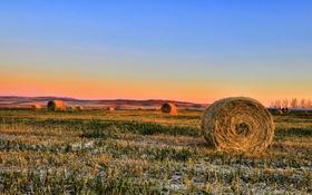 Картинка поле, небо, деревья, закат, горизонт, сено, ферма
