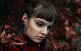 Картинка листья, портрет, макияж, пирсинг, боке