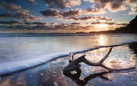 Обои море, берег, закат