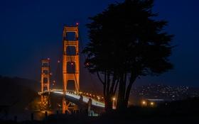Обои мост, Сан-Франциско, Golden Gate Bridge, Золотые Ворота, California, дерево, огни