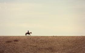 Обои поле, небо, облака, лошадь, линия, горизонт, ковбой
