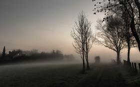 Картинка дорога, ночь, туман