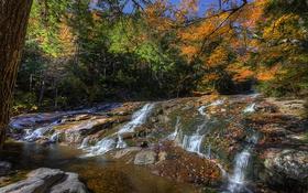Обои осень, лес, природа, река, фото