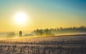 Картинка пейзаж, снег, поле, утро