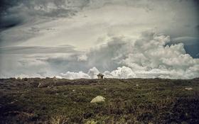 Картинка поле, небо, облака, жилье