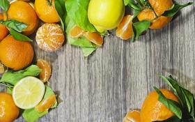 Обои мандарины, цитрусы, лимон, листики