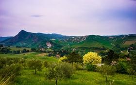 Обои поля, Brisighella, Италия, горы, деревья, простор