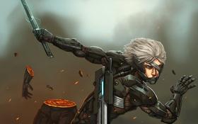 Картинка raiden, Metal Gear Rising: Revengeance, HF Blade