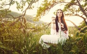 Картинка трава, девушка, солнце, деревья, ветки, река, волосы