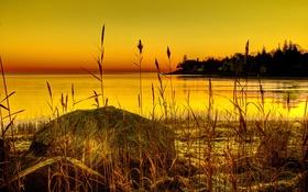 Картинка зарево, растение, камень, берег, озеро, деревья, трава
