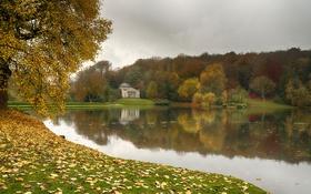 Обои осень, лес, Природа, nature