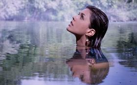Картинка в воде, профиль, отражение