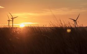 Картинка природа, утро, ветряки