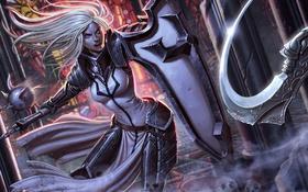 Обои crusader, броня, Diablo III: Reaper of Souls, щит