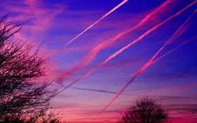 Обои небо, закат, дерево, след, вечер, силуэт, метеорит