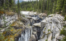 Обои горы, Mistaya Canyon, деревья, Alberta, Canada, лес, Banff National Park