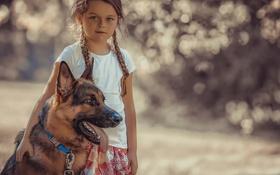 Картинка собака, девочка, овчарка