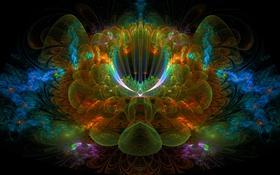 Обои цветок, лучи, линии, фрактал, объем, симметрия