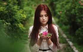 Картинка зелень, лес, цветок, лето, девушка, природа, настроение
