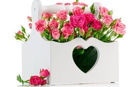 Обои праздник, коробка, сердце, розы, букет, colorful, beautiful