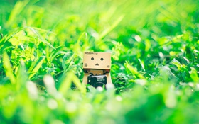 Обои трава, Danbo, amazon, Данбо