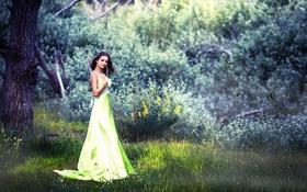 Картинка лес, платье, Naira
