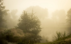 Картинка природа, туман, озеро, утро