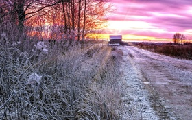 Обои иней, дорога, дом, зима