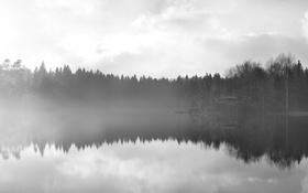 Картинка by Robin De Blanche, Mirror, отражение, гладь, туман, деревья, вода