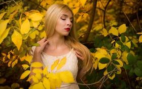 Картинка Girl, Beautiful, Model, Autumn, View, Dress, Leaves
