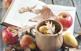 Обои листья, блокнот, яблоки, груша