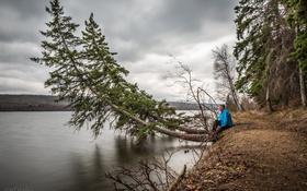 Обои природа, река, Jeff Wallace, дерево