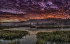 Обои облака, туман, река, восход, холм, кусты