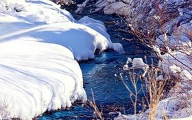 Обои снег, ветки, ручей, фото, bo0xVn