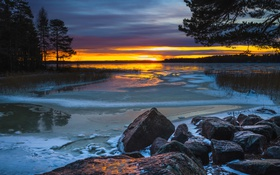 Картинка лес, небо, облака, деревья, озеро, камни, зарево