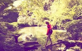 Картинка лето, платье, актриса, лебедь, Nicole Kidman, знаменитость, Николь Кидман