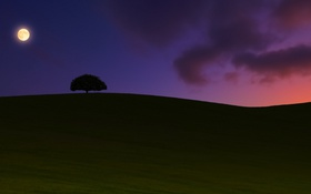 Картинка пейзаж, ночь, sunset, Moonrise