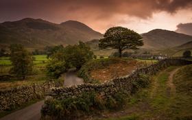 Обои Англия, дорога, деревья, горы, забор, тучи