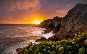 Обои море, волны, восход, скалы