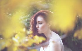 Картинка девушка, профиль, рыжая