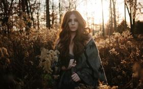 Картинка лес, девушка, солнце, деревья, лист, волосы, бассейн