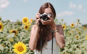 Картинка лето, девушка, подсолнухи, камера