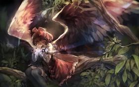 Обои листья, девушка, деревья, природа, ветви, крылья, аниме
