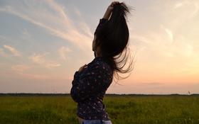 Обои поле, девушка, солнце, закат, волосы, Лето, Россия